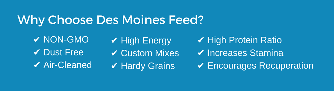 why choose des moines feed graphic non-gmo dust free